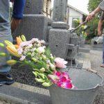花を用意して墓掃除をする写真