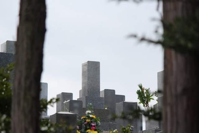 木立の間から見える墓の写真